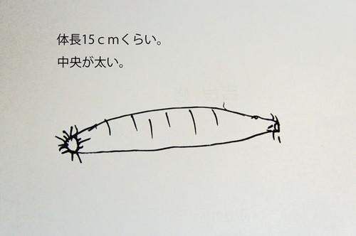 Dsc_4601